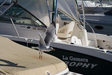 20131006_164336_Puerto-Calero_9998.jpg